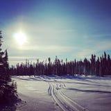 Scenic instagram of snowmobile tracks in snow Stock Photos