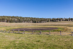 Scenic Kaibab Plateau Meadow. The scenic landscape on the kaibab plateau in northern Arizona Royalty Free Stock Photo