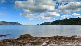 Scenic Kaitarakihi Beach in Huia Stock Photo