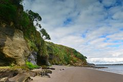 Scenic Kaitarakihi Beach in Huia, New Zealand Royalty Free Stock Images