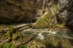 Scenic karst landscape and stone bridge near Zelske cave in national park Rakov Skocjan in Slovenia Stock Image