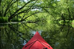Scenic Kayaking. Kayaking backwaters of Mississippi River Royalty Free Stock Photo