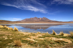 Scenic lagoon in Bolivia, South America Royalty Free Stock Photography