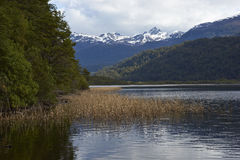 Scenic lake along the Carretera Austral. Scenic lake (Laguna de las Torres) surrounded by snow capped mountains located along the Carretera Austral in the Aysen Royalty Free Stock Photos