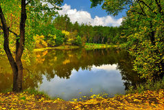Scenic lake in the autumn forest under cloudy sky Royalty Free Stock Image