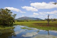 Scenic lake and mountains of  wasgamuwa in Sri Lanka Royalty Free Stock Photos