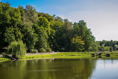 Scenic lake in the summer park Royalty Free Stock Image