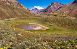 Scenic landscape with Aconcagua in Argentina Stock Photos