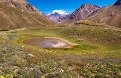 Scenic landscape with Aconcagua in Argentina. Beautiful natural landscape with Aconcagua in the background, Aconcagua National Park, Argentina stock photos