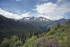 The scenery along the White Pass,Alaska Royalty Free Stock Image