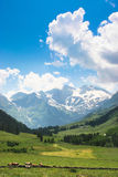 Scenic landscape in the Alps in Salzburg, Austria Stock Images