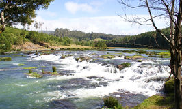 Scenic landscape with beautiful water stream Stock Image