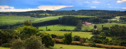 Scenic landscape in Brazil. Panoramic view of farm landscape in Brazil near Sorocaba royalty free stock photo