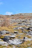 Scenic landscape of Burren national park in Ireland. Scenic landscape in Burren national park in Ireland Stock Photos