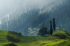 Scenic landscape countryside of Sonamarg, Jammu and Kashmir, India. Scenic landscaped countryside of Sonamarg, Jammu and Kashmir, India royalty free stock photos