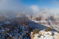 Scenic Grand Canyon in Winter Royalty Free Stock Images