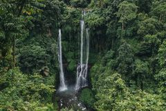 Scenic landscape with green trees and majestic waterfall. Sekumpul, Bali royalty free stock photography