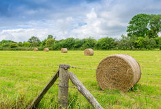 Scenic landscape with hay bales on Summer day Royalty Free Stock Image