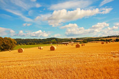 Scenic landscape with haybales Royalty Free Stock Photo