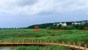 Scenic landscape of Hsing-K`ai hu wetland park 3. Taken at  Hsing-K`ai hu wetland park, Aug 12,2015, Mishan city , Heilongjiang province ,China Royalty Free Stock Image