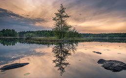Scenic landscape with idyllic small island at summer night in National Park, Liesj�rvi, Finland Royalty Free Stock Photography