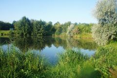 Scenic landscape of lake nature Ukraine, Europe lake and forest blue sky royalty free stock photos