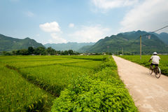 Scenic landscape of Mai Chau, Vietnam Royalty Free Stock Photography
