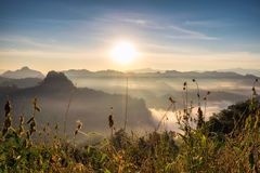 Scenic landscape meadow on fog hill in morning Royalty Free Stock Photo