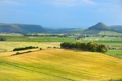 Scenic landscape of meadow in Sardinia. Scenic landscape of a yellow and green meadow in Sardinia Stock Photo