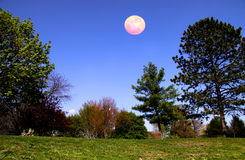 Scenic landscape in moon light Royalty Free Stock Photos