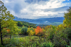 Scenic landscape with mountain forest Royalty Free Stock Photo