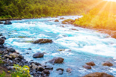 Scenic landscape with mountain river Stock Images