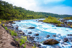 Scenic landscape with mountain river Royalty Free Stock Image