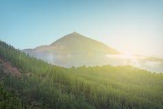 Scenic landscape - Mountain, sun and forest valley - Pico de Tei Stock Image