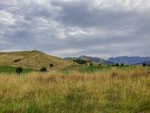 Scenic landscape near Kaikoura on the South Island of New Zealand stock photo