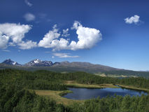 Scenic landscape in Norway. Beautiful landscape in Norway. Lake, forest and mountains Stock Photography