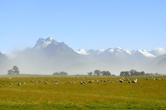 Scenic landscape in NZ. Stock Photo