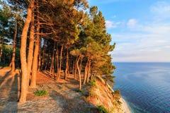 Scenic landscape of pine tree wood on steep coast cliff at sunset. Seaside blue sky Black Sea coast scenery stock photo
