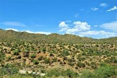 Bartlett Lake Reservoir, Maricopa County, State of Arizona, United States scenic landscape view. Scenic landscape spring view of surrounding area of Bartlett stock photos