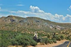 Bartlett Lake Reservoir, Maricopa County, State of Arizona, United States scenic landscape view. Scenic landscape spring view of surrounding area of Bartlett stock image
