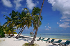 Scenic landscape of sunny tropical ocean beach with white sand, coconut palm trees, blue sky and lounge chairs. Idyllic scenery of Royalty Free Stock Photo