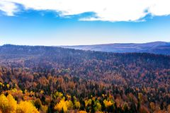 Scenic landscape with trees in mountains. Scenic landscape with trees in mountain forest in autumn stock images