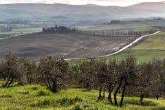 Scenic landscape, Tuscany. Scenic landscape with cypress trees, Tuscany, Italy stock photo