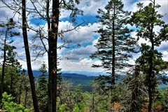 Apache-Sitgreaves National Forest, Arizona, United States. Scenic landscape view of the Apache Sitgreaves National Forest located in east central Arizona, United Royalty Free Stock Photography