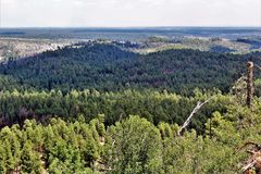 Gentry Outlook, Apache Sitgreaves National Forest, Arizona, United States. Scenic landscape view of Gentry Outlook, located in Apache Sitgreaves National Forest Stock Photos