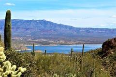 Theodore Roosevelt Lake, Gila County, Arizona. Scenic landscape view of Theodore Roosevelt Lake in Gila County, Arizona Stock Image