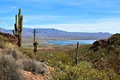 Theodore Roosevelt Lake, Gila County, Arizona. Scenic landscape view of Theodore Roosevelt Lake in Gila County, Arizona Royalty Free Stock Photography