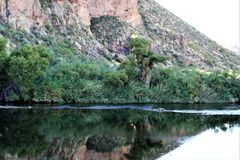 Superstition Wilderness Area, Maricopa, County, Arizona, United States. Scenic landscape with water and vegetation of the Superstition Wilderness Area, located Royalty Free Stock Photography