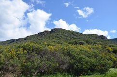 Scenic landscape of west Sardinia. Italy stock images