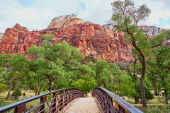Scenic landscape in Zion national park, USA Royalty Free Stock Photo